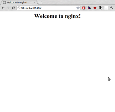 Welcome to Nginx screen